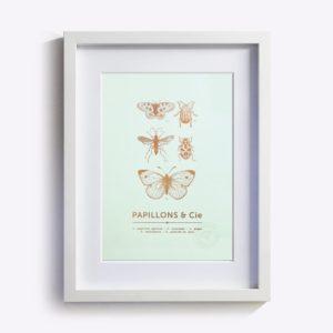 affiche-papillons-cie-vert-d-eau