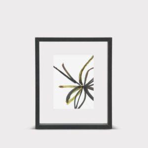 cadre-flottant-M-noir-urban-nature-culture-01